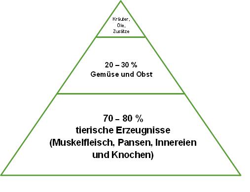Hunde Ernährungspyramide