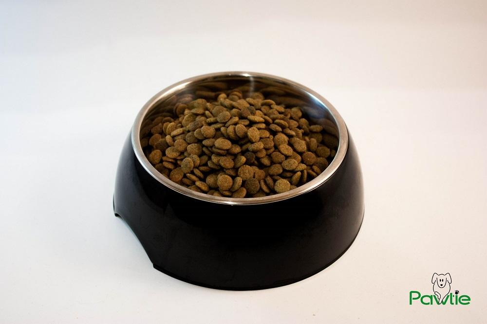 Hundeernährung - Trockenfutter