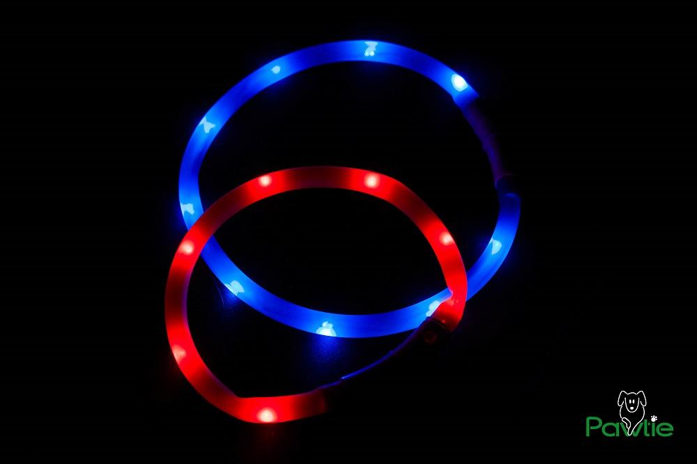 Leuchthalsband - rot und blau