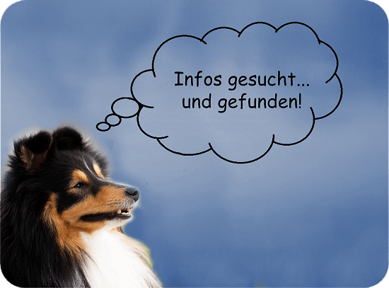 Pawtie - Informationen und Tipps zum Thema Hund